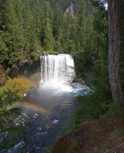 Koosah Falls on the Upper McKenzie River