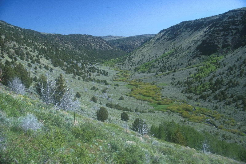 Steens Mountain Wilderness Area